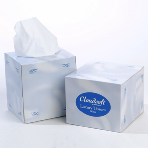 Cube Tissues 2 ply white - 015660